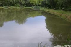 Látóhegy 1 tó (09)