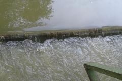 Látóhegy 1 tó (11)