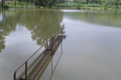 Látóhegy 1 tó (59)