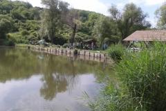 Látóhegy 2 tó (28)