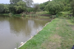 Látóhegy 2 tó (29)