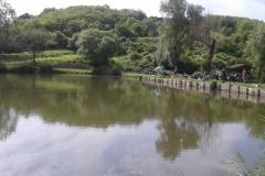Látóhegy 2 tó (8)