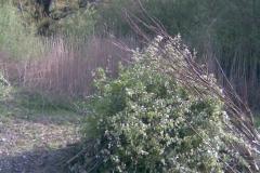 Kép033